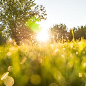 Letné ráno v Zázrivej