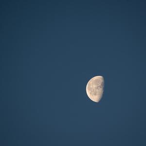 Mesiac.Silvester.rano