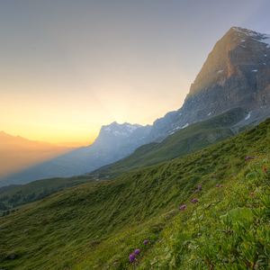 Scheidegg Sunrise