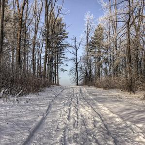 Chladná cesta