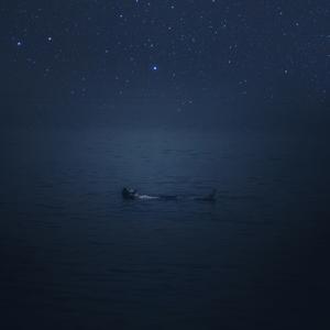 """Under the Stars"""