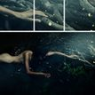 """""""""""the dream of dark forest II"""""""