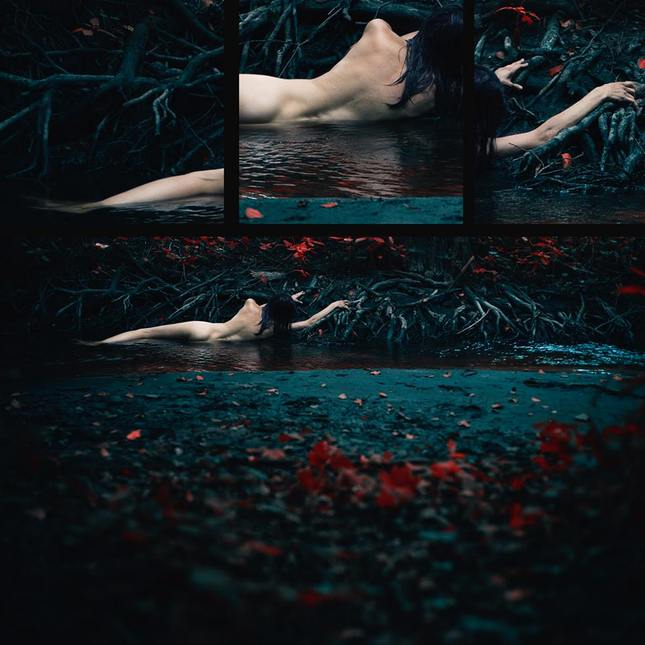 """""""the dream of dark forest I"""""""