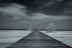 Prechádzka nikam