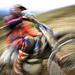 Countrycross_2