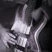 6-string bass