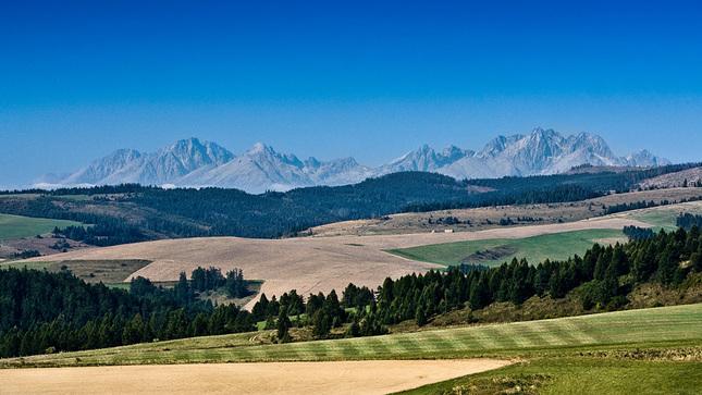 Polia, lúky, lesy, hory...