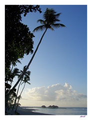 Svitanie na pláži