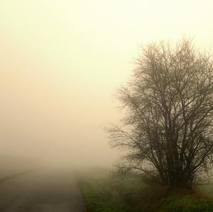 Sĺnko vyháňa hmlu