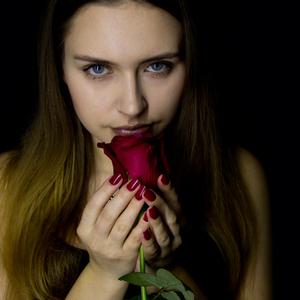umlčaná ružou II.