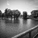 jazero Chiemsee
