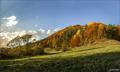 Jesenné farebnuô