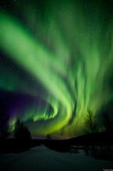 Lapland - 2