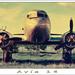Avia 14