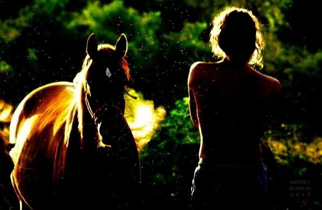 Peace Love and Freedom III