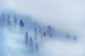 The Mysterious Fog