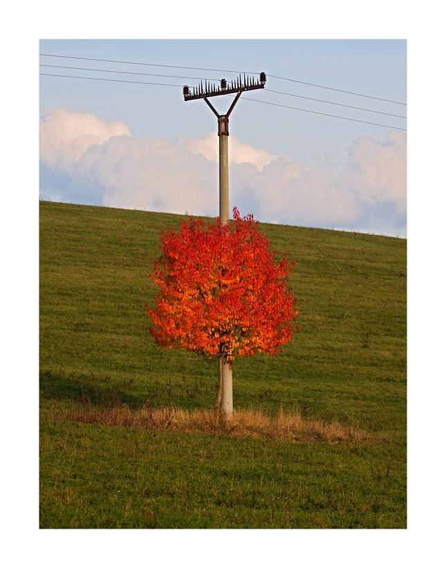Energická jeseň