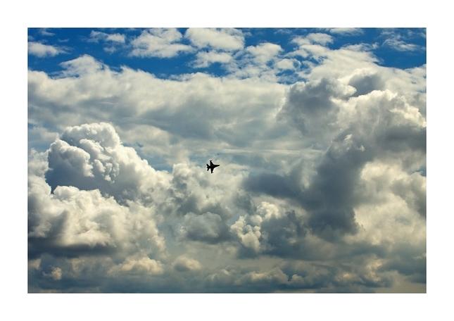 Lieta si vtáčik oceľový