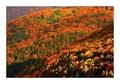 Jesenné farbičky