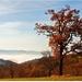 S výhľadom na jeseň
