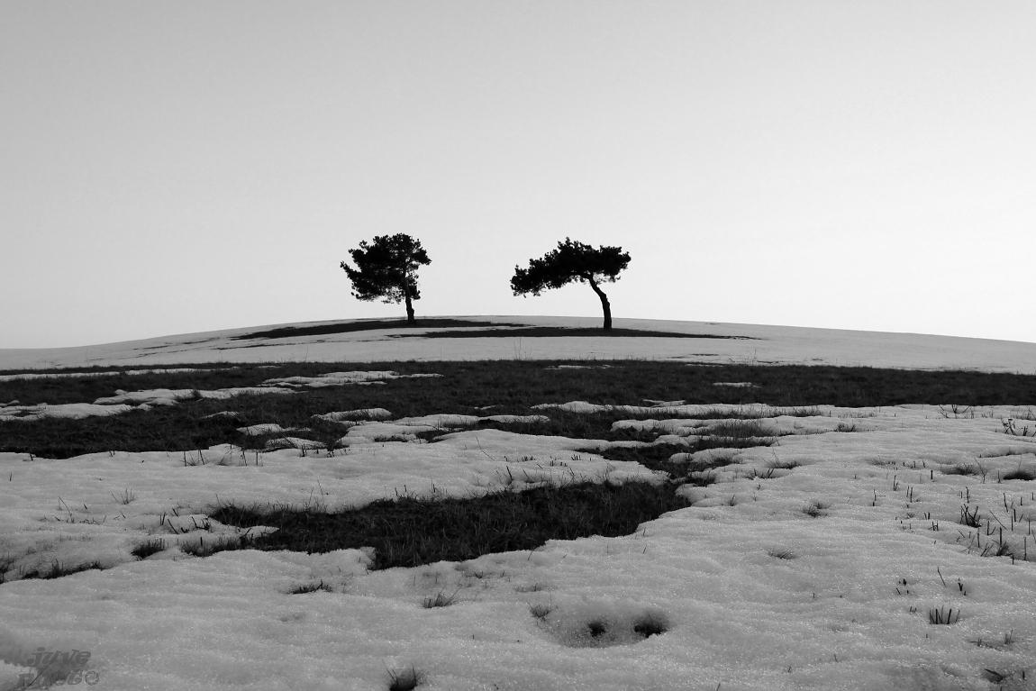 Dvaja v zime