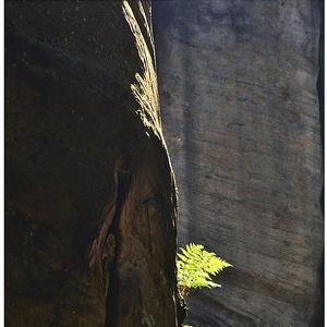 ..na skale vyrastená....