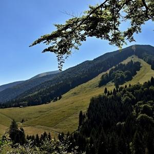Terchovské lúky a lesy...