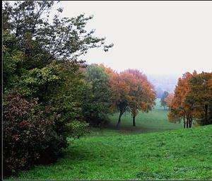 jeseň a hmla...