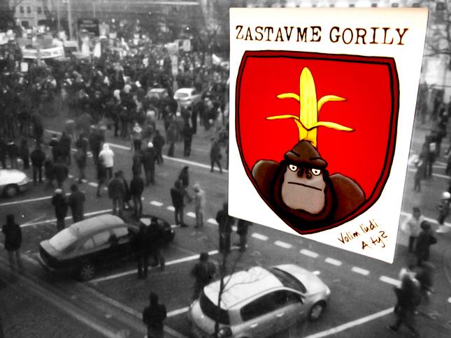 ZASTAVME GORILY-BRATISLAVA