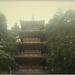 ráno pri pagode