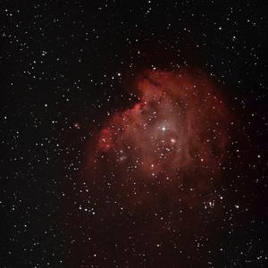 Opičia hlava - NGC2174, 2175