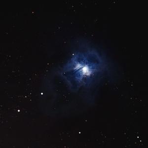 NGC 7023 - Iris