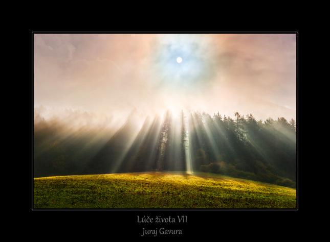 Lúče života VII