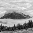 Zahalený hmlou