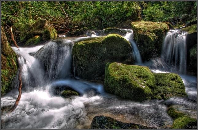 Látaná dolina-potok