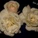 Ruže a Perly