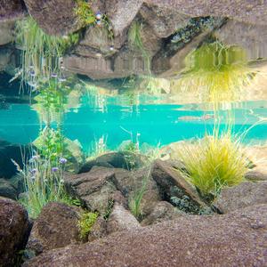Podvodné zrkadlo