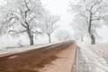 Zimná cesta......