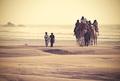 z mora do púšte