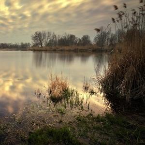 predjarie rybníkové