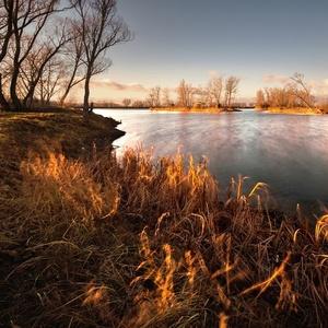 rybníkovozimná III
