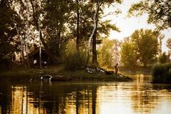 na našom rybníku III