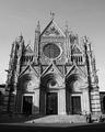Duomo - Siena