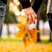 Jesenná láska II.