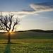 západ slnka pri Vrbovom