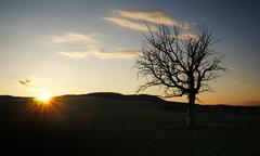 zádad slnka pri Vrbovom IV