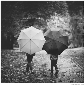 Kamarád do deště . . .