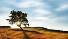 zádad slnka pri Vrbovom II