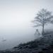 február v hmle