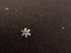 snehový vločiak